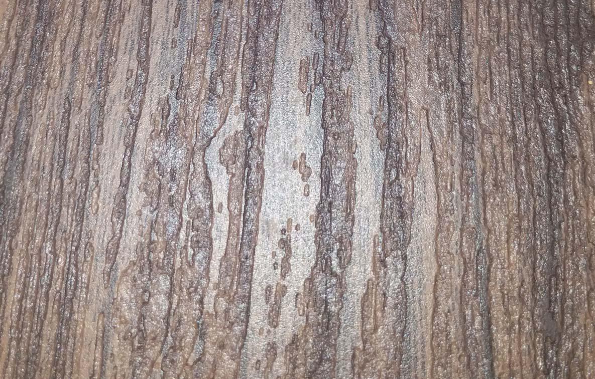 蜂窝铝板对保护生态环境的贡献